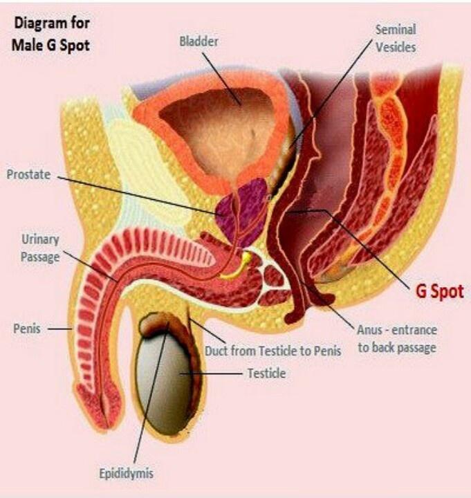 G Spot male treatment clinic in chennai