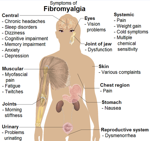 udal vali, body pain, fibromyalgia Symptoms homeopathy treatment clinic in chennai